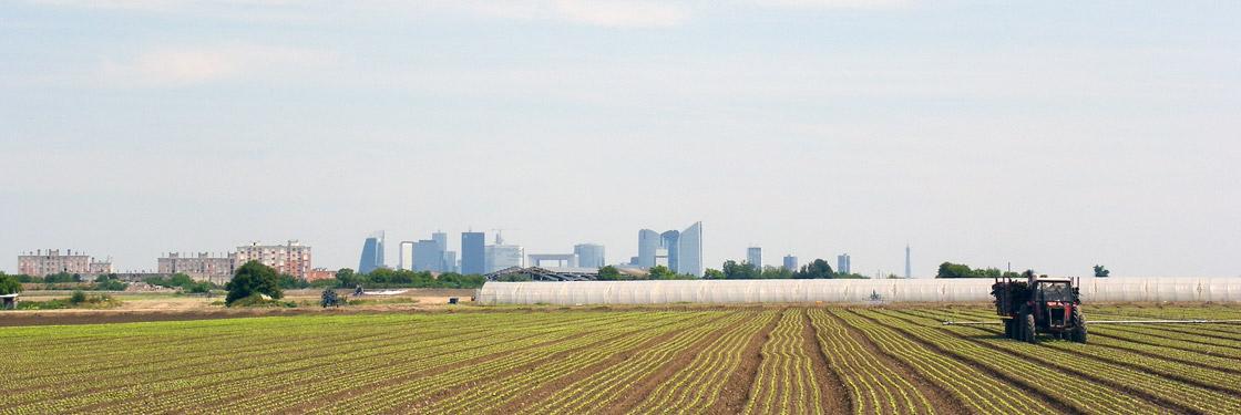 Pour préserver et valoriser la Plaine de Montesson, Sartrouville, Carrières-sur-Seine, le Mesnil-le-Roi et ses environs